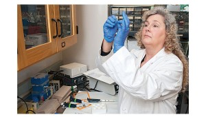 Dr. Sharon Campbell is part of a team that will examine whether symptoms of despair and losing interest in activities that were once pleasurable result from the production of free radicals - and whether a diet rich in vitamin E could quench the free radicals.