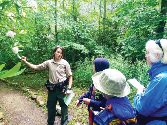 Contributed Photo Roan Mountain State Park Ranger Meg Guy discusses rhododendron maximus along the Peg Leg Mine Trail.